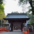 写真: 櫛引八幡宮・正門