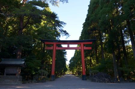 霧島神宮・二の鳥居と参道