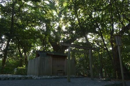 月夜見宮 - 高河原神社4