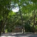 写真: 御塩殿神社 - 御塩殿神社2