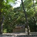 写真: 御塩殿神社 - 御塩殿神社3