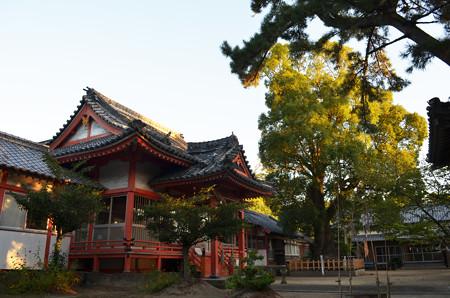 奈多宮-社殿