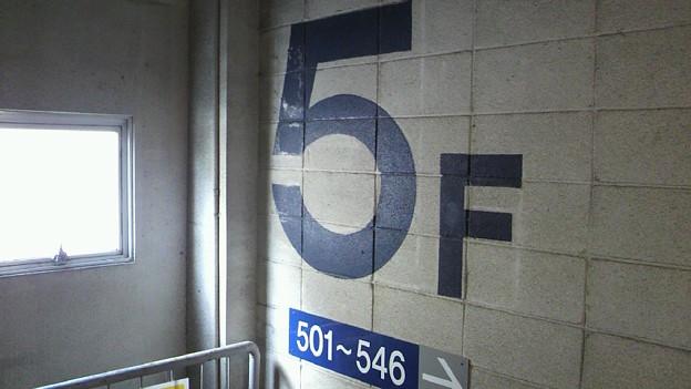 5F 階段