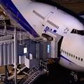 羽田空港 ANA B747-400D ジャンボ