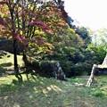 Photos: 高取城跡紅葉15