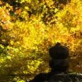 Photos: 談山神社紅葉30