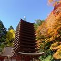 Photos: 談山神社紅葉10