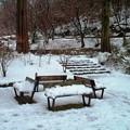 Photos: 雪景色09