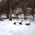Photos: 雪景色08