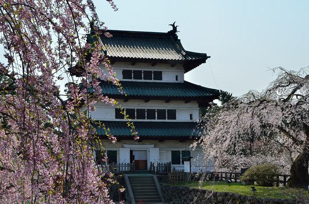 弘前公園・桜の頃 (7)