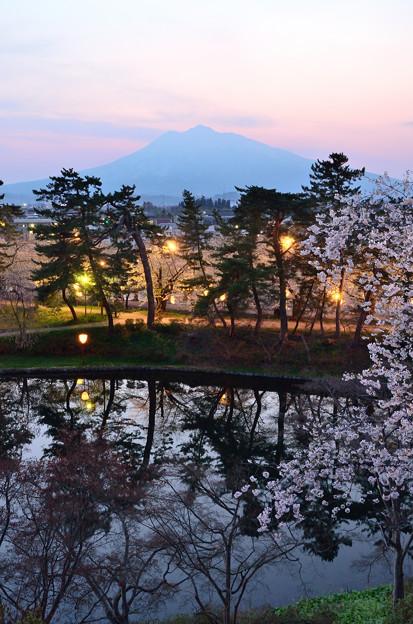 弘前公園・夜桜見物 (1)