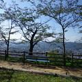 写真: IMGP0008