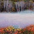 秋彩玉原湿原