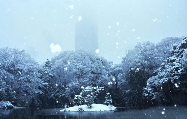 雪で霞むドコモタワー2