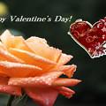 写真: Valentine4