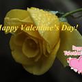 写真: Valentine5