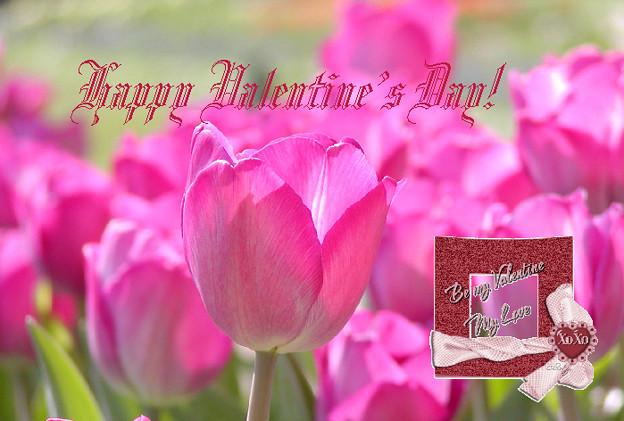 Valentine10