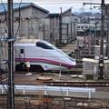 写真: まだ秋田にいます