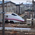 Photos: まだ秋田にいます