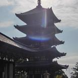 神社仏閣巡り