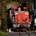 Photos: 池子のトンネルを抜ける甲種輸送列車