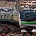 Photos: E233系試運転列車