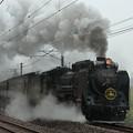 Photos: D51498牽引SLレトロ碓氷号(西松井田~横川)