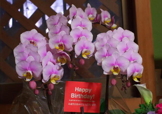 お誕生日に・・・お花