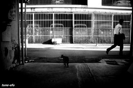 大黒市場2012夏#7