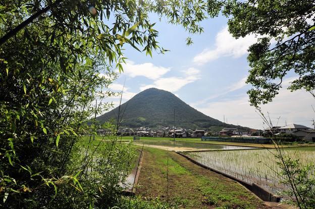 夏へ向かう さぬき富士