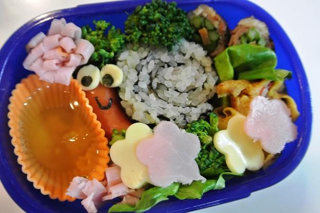 写真: カタツムリおにぎり弁当
