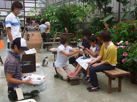 20120908 掛川 イチゴ&カリン10