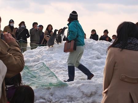 20130120 名古屋港 雪山ジェンツー47