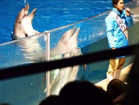 20130209 京都水 夜の水族館09