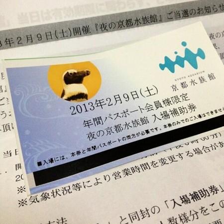 夜の京都水族館招待券