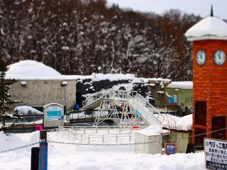20140124 旭山 ペンギン館01