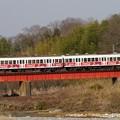 写真: 冬枯れ鐵道