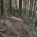 写真: 芝生古墳石材