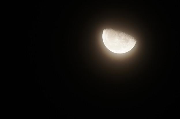 薄雲越しの朧月