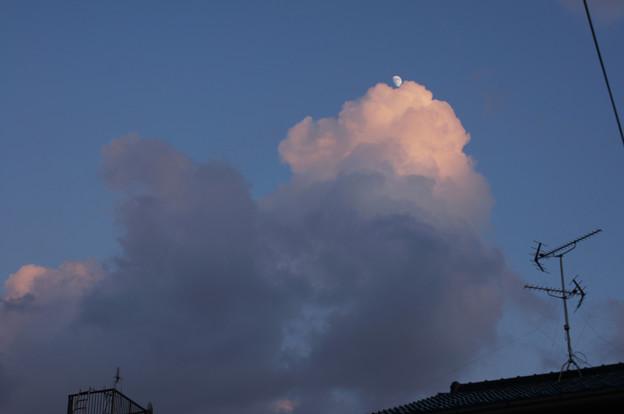 二色に分かれた積雲