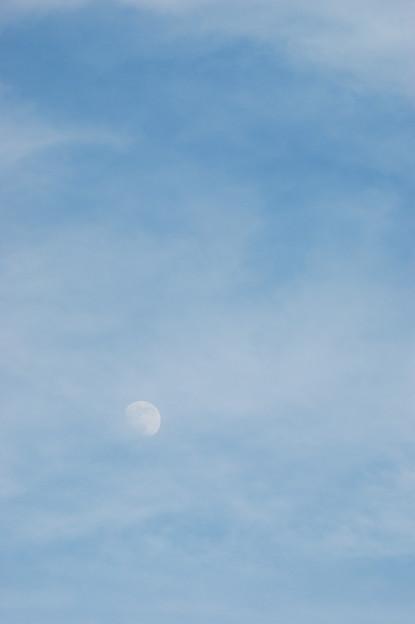 月の見える夕空