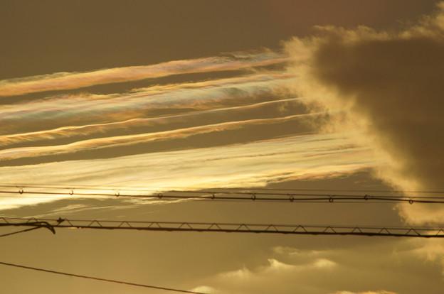 彩雲 11