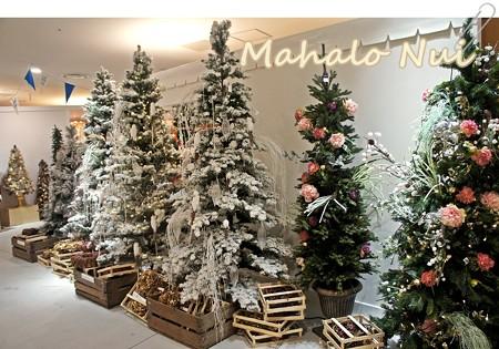 色とりどりの豪華クリスマスツリー