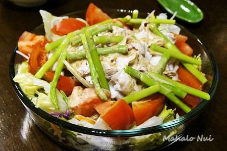 お野菜たっぷり冷しゃぶサラダ