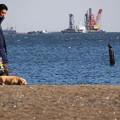 2110_城南島海岸