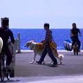 Photos: 24西浜ウィークエンド