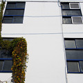 写真: 青い窓枠