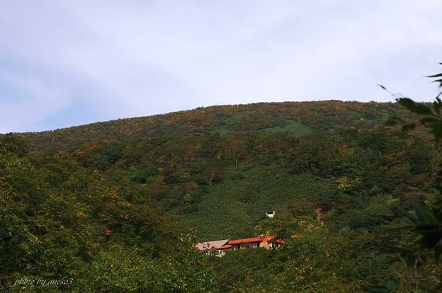 駒ケ岳温泉旅館まで色づき