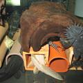 Photos: 20140403 45cmプレコ水槽のプレコ達