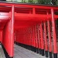 写真: 三光稲荷神社